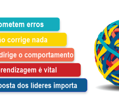 20200812-os-5-principios-basicos-do-hop-human-and-organizational-performance (1)